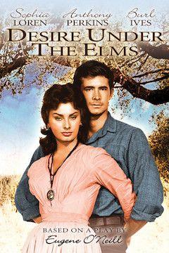 Desire Under the Elms movie poster.