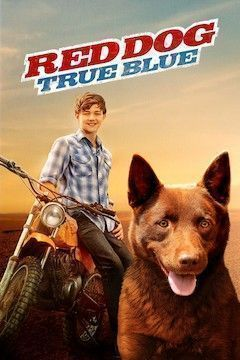 Red Dog: True Blue movie poster.