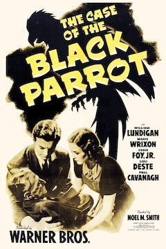 The Case of the Black Parrot movie poster.