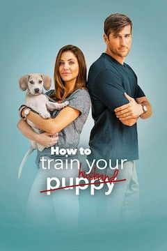 How to Train Your Husband movie poster.