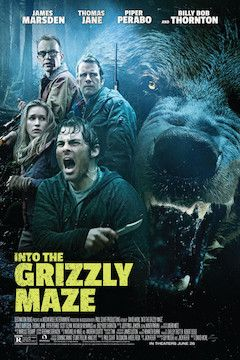 Into the Grizzly Maze movie poster.