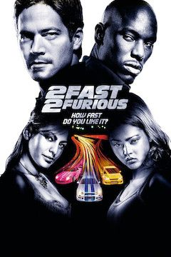 Too Fast Too Furious movie poster.