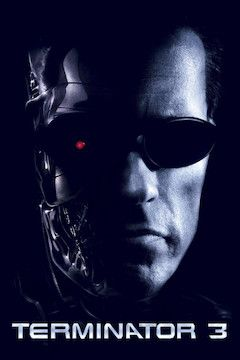 Terminator 3: Rise of the Machines movie poster.