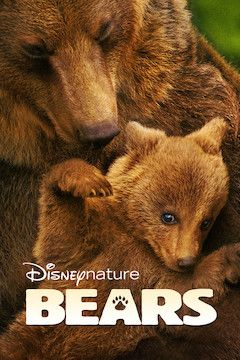 Poster for the movie Bears
