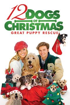 12 Dogs of Christmas: Great Puppy Rescue movie poster.