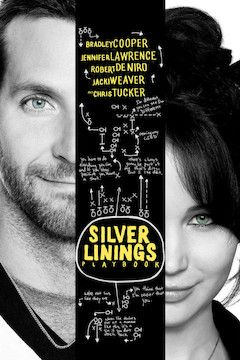 Silver Linings Playbook movie poster.