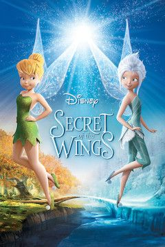 Secret of the Wings movie poster.
