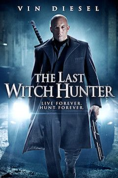 The Last Witch Hunter movie poster.