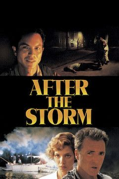 After the Storm movie poster.