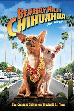 Beverly Hills Chihuahua movie poster.