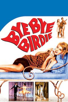 Poster for the movie Bye Bye Birdie