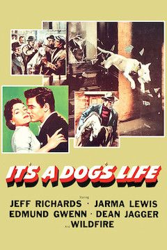 Poster for the movie It's a Dog's Life