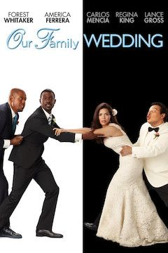 Poster for the movie Our Family Wedding