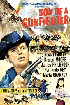 Poster for the movie Son of a Gunfighter