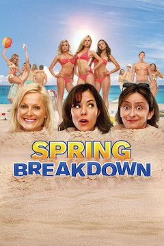 Spring Breakdown movie poster.