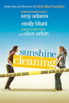 Sunshine Cleaning movie poster.