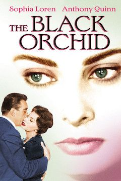 The Black Orchid movie poster.