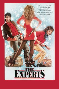 The Experts movie poster.