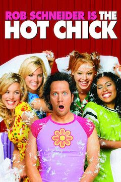 Poster for the movie The Hot Chick