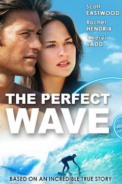 Poster for the movie The Perfect Wave