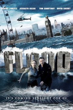 Flood movie poster.