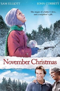 November Christmas movie poster.