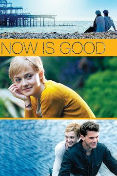 Now Is Good movie poster.