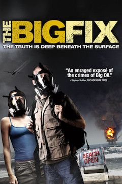 The Big Fix movie poster.