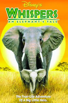 Whispers: An Elephant's Tale movie poster.