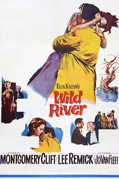 Poster for the movie Wild River