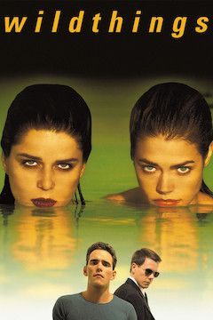 Wild Things movie poster.