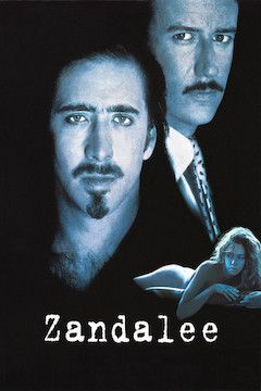 Zandalee movie poster.
