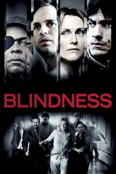 Poster for the movie Blindness