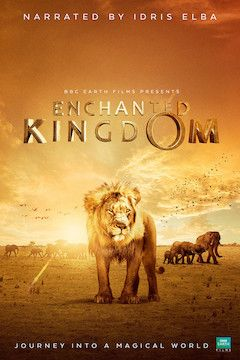 Enchanted Kingdom movie poster.