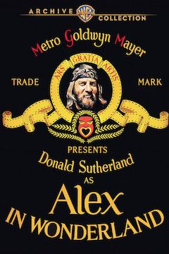 Alex in Wonderland movie poster.