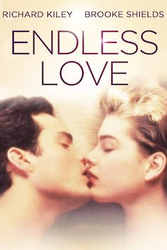 Endless Love movie poster.