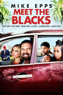 Meet the Blacks movie poster.