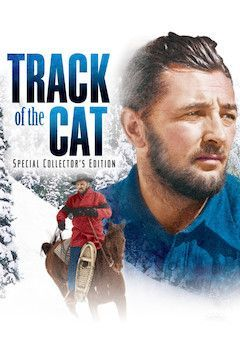 Track of the Cat movie poster.