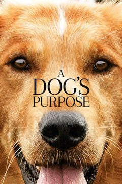 A Dog's Purpose movie poster.