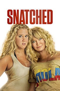 Snatched movie poster.