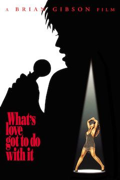 What's Love Got to Do With It? movie poster.