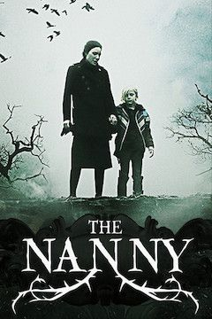 Poster for the movie The Nanny