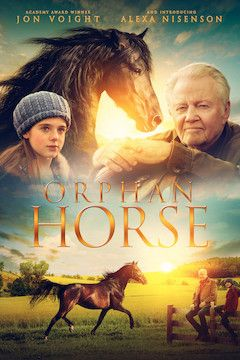 Orphan Horse movie poster.