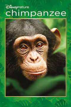 Chimpanzee  movie poster.