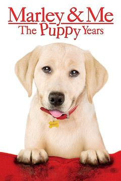 Poster for the movie Marley and Me: The Puppy Years