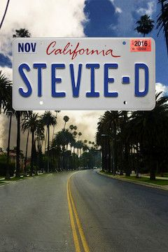 Poster for the movie Stevie D