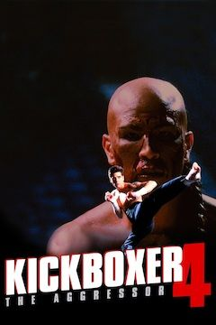 Kickboxer 4: The Aggressor movie poster.