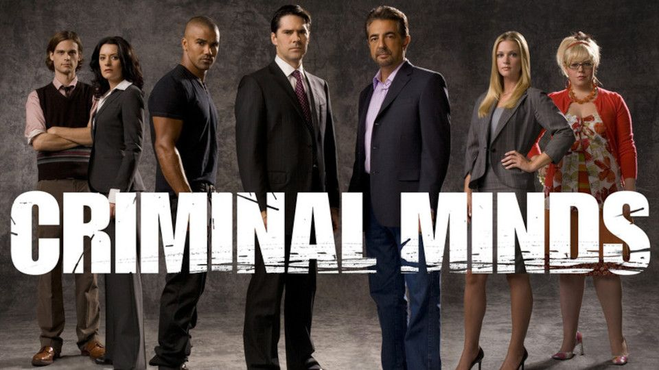 Image for the TV series Esprits criminels