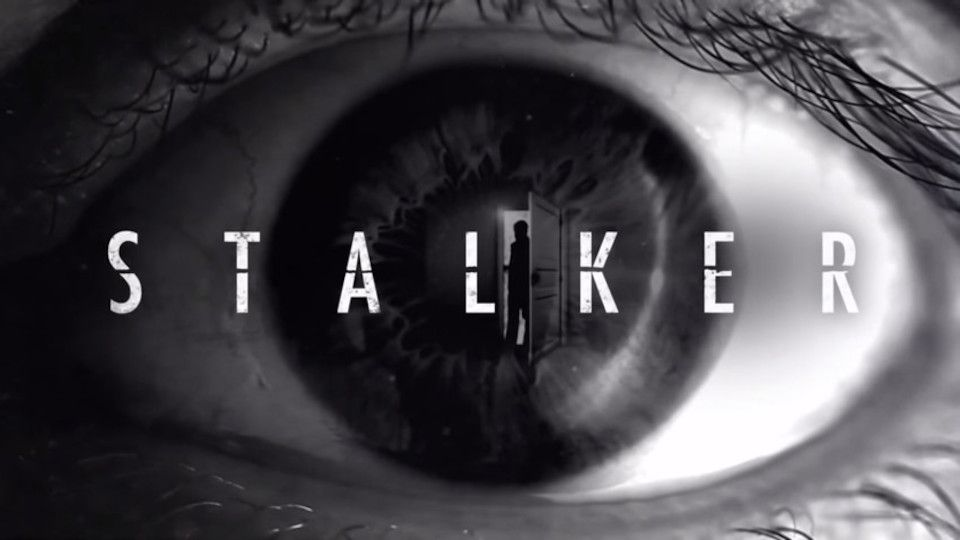 Image for the TV series Stalker