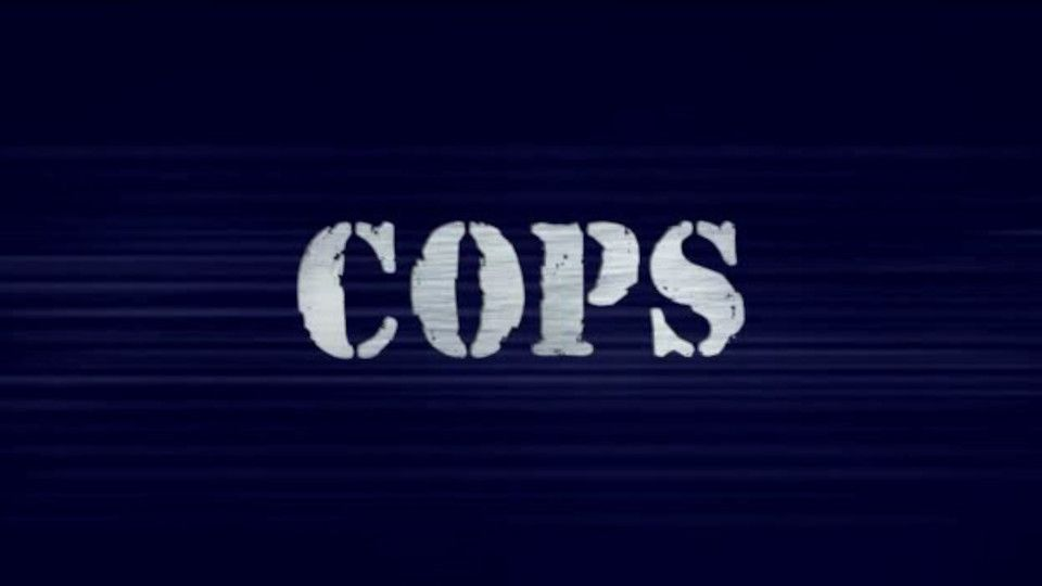 Image for the TV series Cops